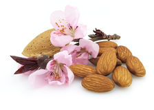 Almonds with flowers. Dried almonds with pink flowers Stock Photo