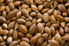 Almonds. Fresh almonds in nutshell for sale Royalty Free Stock Image
