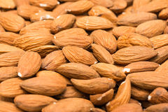 Almonds Fruits Background Stock Image