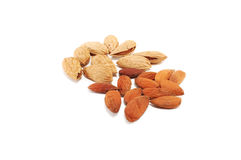 Almonds grain Stock Photography