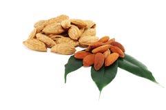 Almonds grain Stock Image