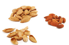 Almonds grain Stock Image