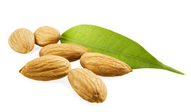 Almonds and a green leaf. On a white background Royalty Free Stock Photo
