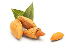 Almonds with green leaves Royalty Free Stock Photos