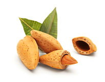 Almonds with green leaves Stock Photo