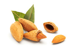 Almonds with green leaves Stock Photos