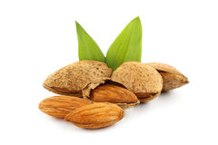 Almonds with green leaves Royalty Free Stock Images
