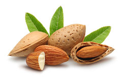 Almonds groups Stock Image
