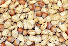 Almonds & Hazelnuts Royalty Free Stock Images