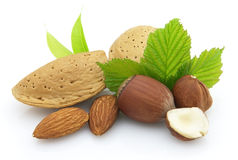 Almonds with hazelnuts Royalty Free Stock Images