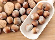 Almonds and hazelnuts Stock Photo
