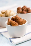 Almonds, hazelnuts and acajou. In the white dishes royalty free stock photography