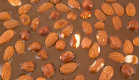 Almonds and hazelnuts chokolate Royalty Free Stock Photos