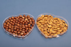 Almonds and hazelnuts Stock Photos