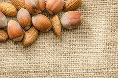 Almonds and hazelnuts Royalty Free Stock Images