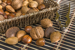 Almonds, hazelnuts, walnuts, brazil nuts Stock Photos