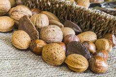 Almonds, hazelnuts, walnuts and brazil nuts Stock Photo