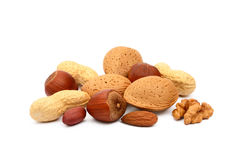 Almonds, hazelnuts, walnuts and peanuts Stock Images
