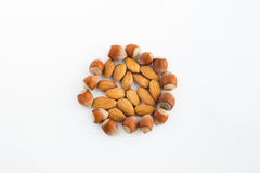 Almonds and hazelnuts on a white background Stock Photos