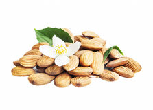 Almonds Isolated with Flower and Leaf Stock Photos