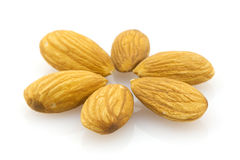 Almonds, isolated macro. Six almond nuts organized like flower petals Stock Photos