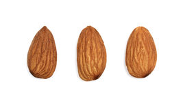 Almonds isolated on white background Stock Photography