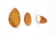 Almonds isolated on a white Stock Photography