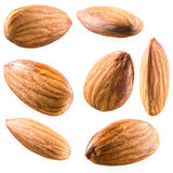 Almonds isolated on white background. Collection Stock Photo