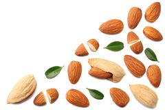 almonds isolated on white background top view stock images