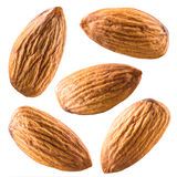 Almonds isolated on white. Collection. Almonds isolated on white background. Collection stock photo
