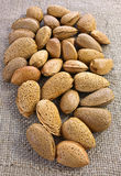 Almonds on jute surface Royalty Free Stock Image