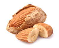 Almonds kernel Stock Image