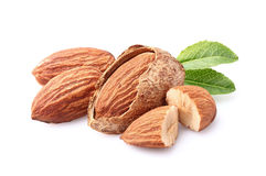 Almonds kernel in closeup Stock Images