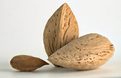 Almonds with kernel Royalty Free Stock Image