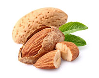Almonds kernel Stock Photography