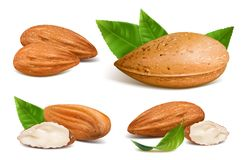 Almonds with kernels Stock Image