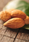 Almonds with leaf Stock Image