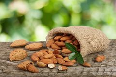 Almonds with leaf in bag from sacking on a wooden table with blurred garden background Stock Images