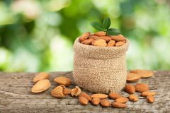 Almonds with leaf in bag from sacking on a wooden table with blurred garden background Royalty Free Stock Image