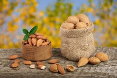 Almonds with leaf in bag from sacking on a wooden table with blurred garden background.  Royalty Free Stock Photography