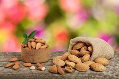 Almonds with leaf in bag from sacking on a wooden table with blurred garden background.  Royalty Free Stock Images
