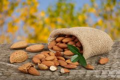 Almonds with leaf in bag from sacking on a wooden table with blurred garden background Royalty Free Stock Photos