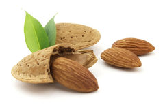 Almonds with leaves. On a white background royalty free stock images