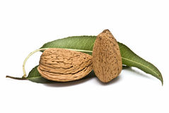 Almonds with leaves. Stock Photo