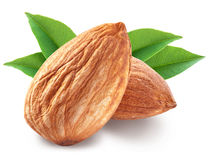 Almonds with leaves . stock photo