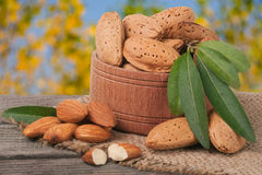 Almonds with leaves in a bowl on the old wooden board  blurred garden background Royalty Free Stock Photos