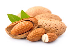 Almonds with leaves Stock Images