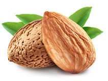 Almonds with leaves isolated. Royalty Free Stock Images