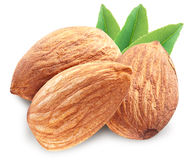 Almonds with leaves isolated. Almonds with leaves isolated on white background. Image with maximum sharpness. Clipping path royalty free stock images