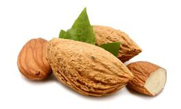 Almonds with leaves. Isolated. Snack, kernel Royalty Free Stock Photography